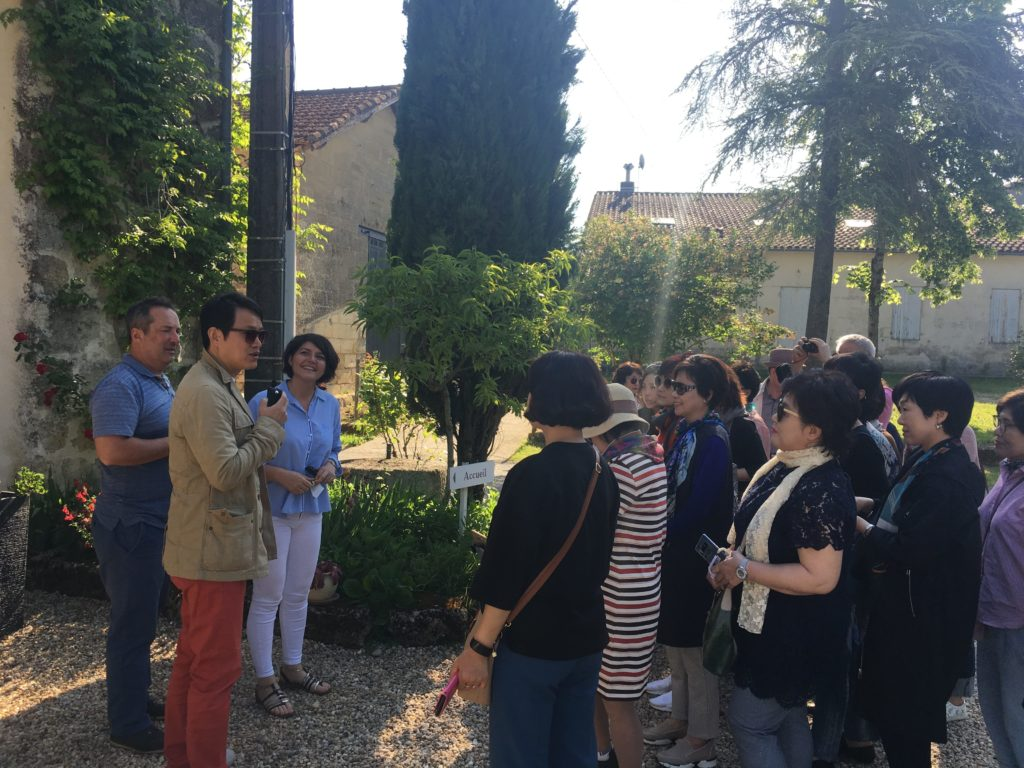 winetourisme in Bordeaux with KUONI